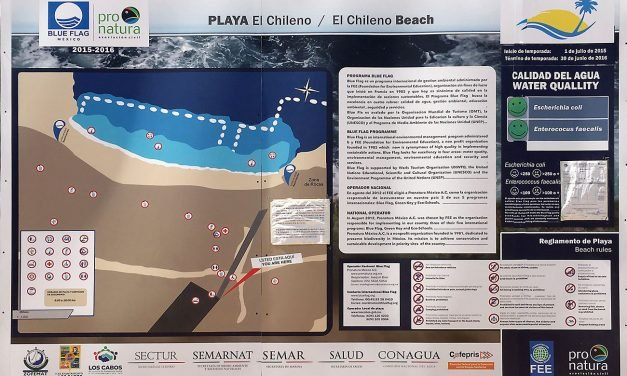 Blue Flag Beaches Los Cabos