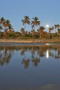 playa-las-palmas_x_7584_r2