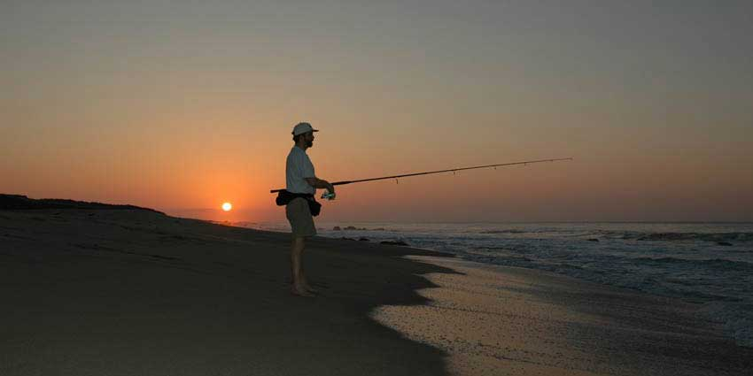 Surf fishing cabo san lucas beaches for Surf fishing san diego