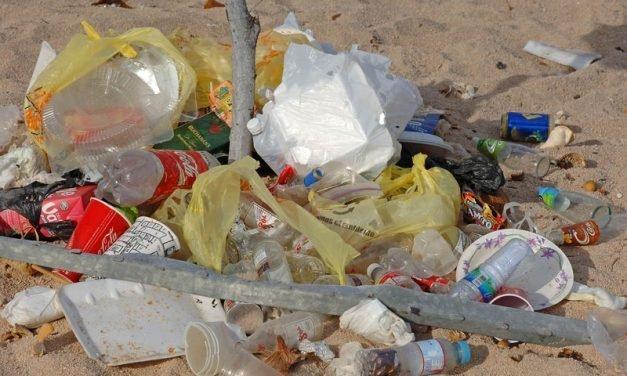 Keep Beaches Clean